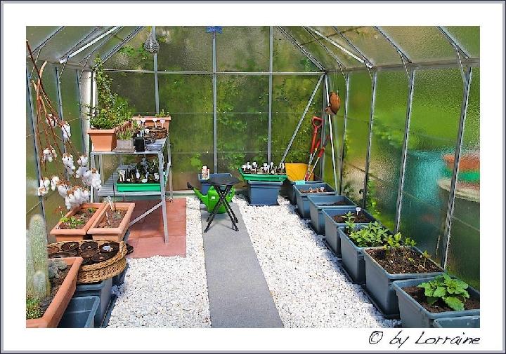 Suche Ideen für Gewächshaustisch - Gartenplanung & Gartengestaltung - GREEN24 Hilfe Pflege Bilder