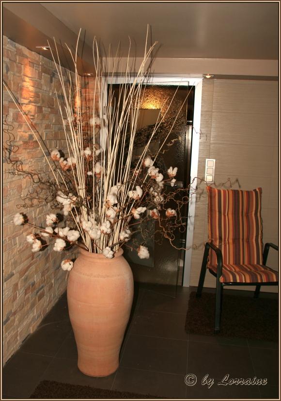 pflanzen ohne licht treffpunkt stammtisch green24 hilfe pflege bilder. Black Bedroom Furniture Sets. Home Design Ideas